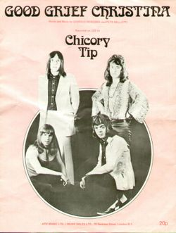 Chicory_tip_christina_uk