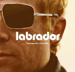 Labradorfront