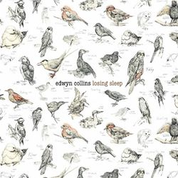 Edwyn-Collins-Losing-Sleep-Album-Art