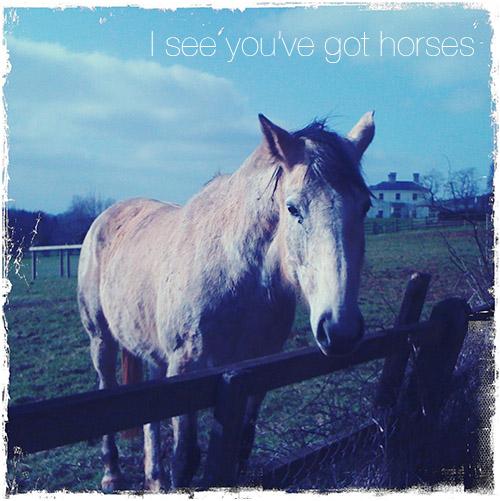 I see you've got horses