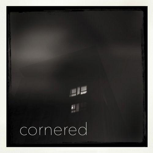 1 - cornered