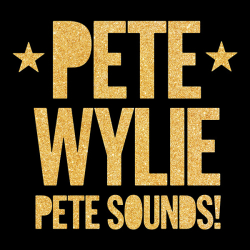 PeteSounds_artwork-600px