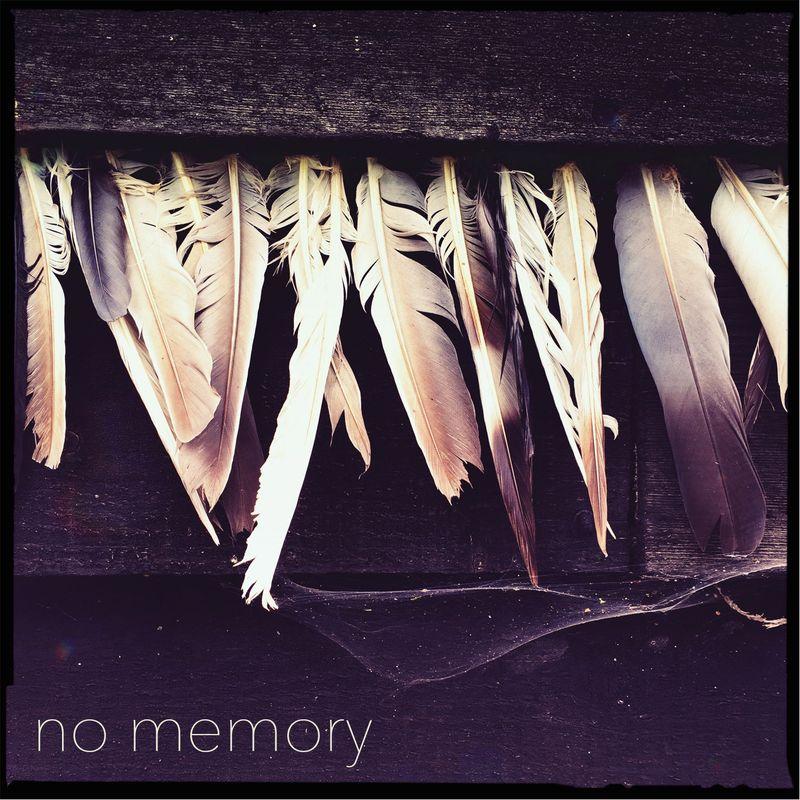 No memory